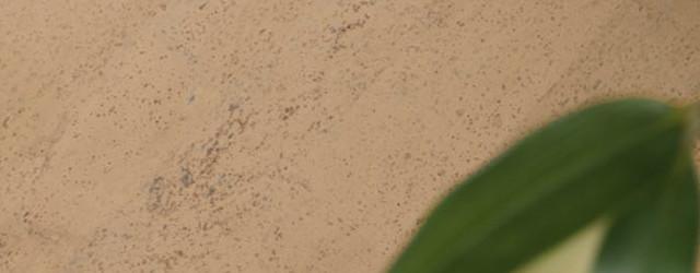 Korkboden kaufen – einige hilfreiche Tipps