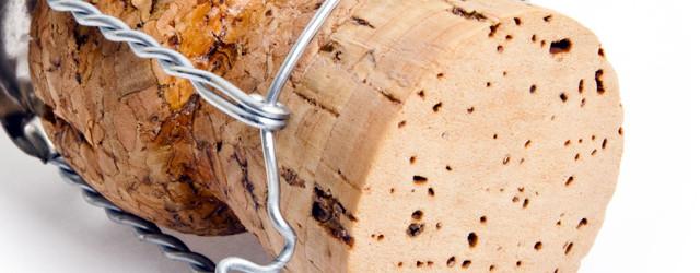Jahrtausende alter Baum mit einzigartigen Eigenschaften